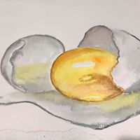 egg water color